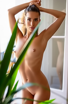 Stunning Playboy Model Nicole Winter